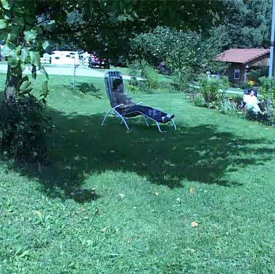 Urlaub Mit Hund Eingezäunter Garten: Urlaub Mit Hundesport In Bayern, Bayerischer Wald